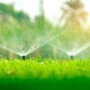Tecniche di Irrigazione del giardino
