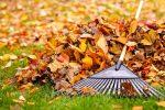 Soffiatore per foglie: elettrico, a scoppio o a batteria?